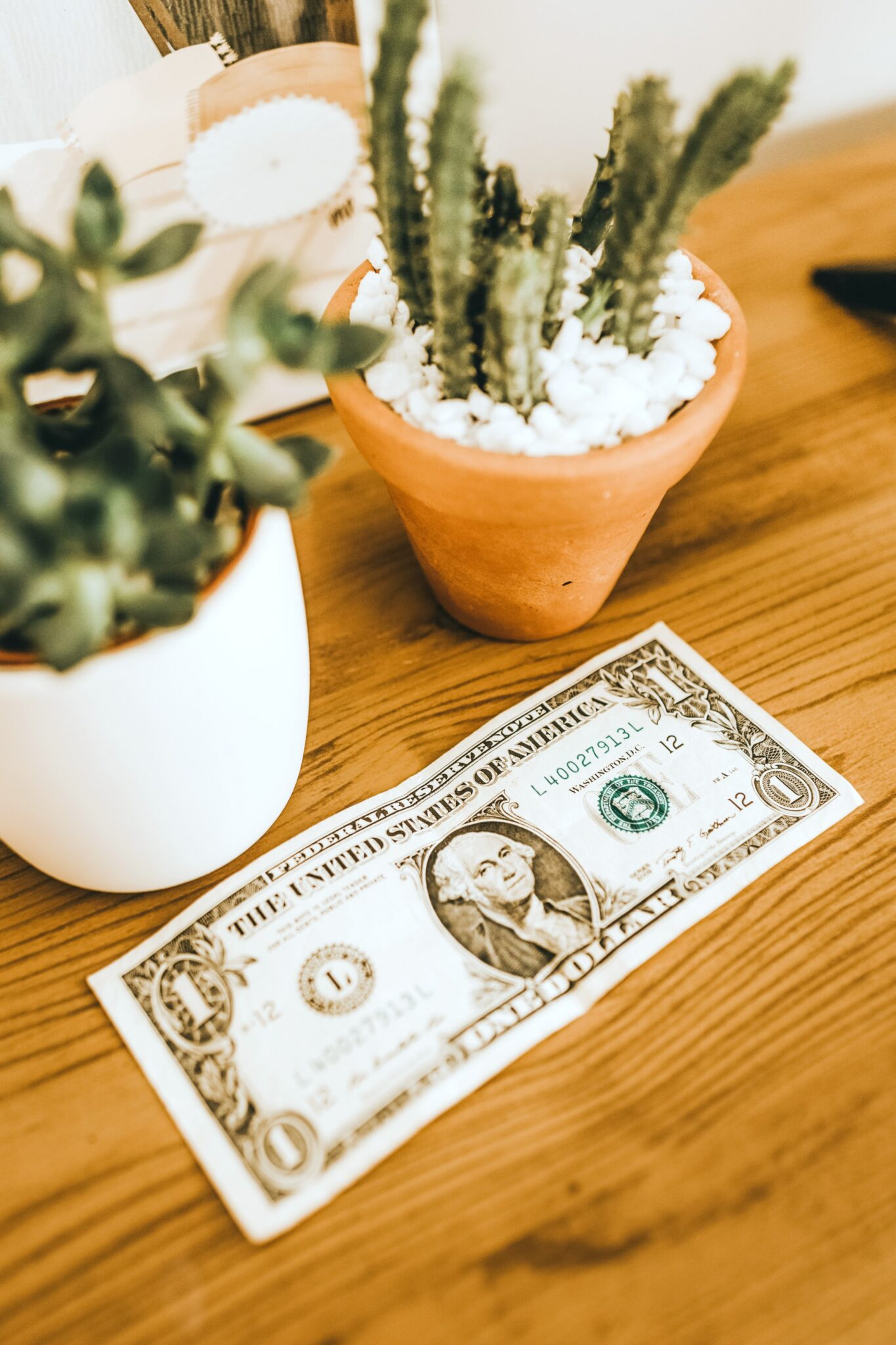 Wooden table with succulents and a dollar bill. A picture for 5 simple ways to reduce your monthly expenses.
