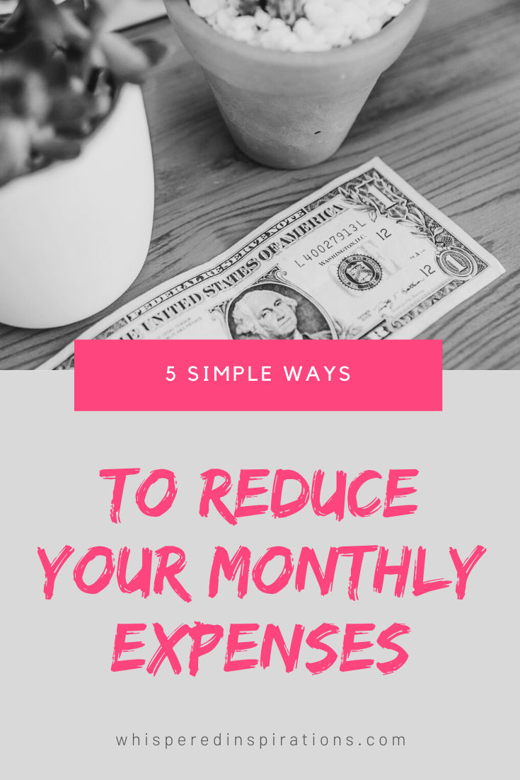 "A banner reads, ""5 Simple ways to Reduce Your Monthly Expenses,"" Wooden table with succulents and a dollar bill."