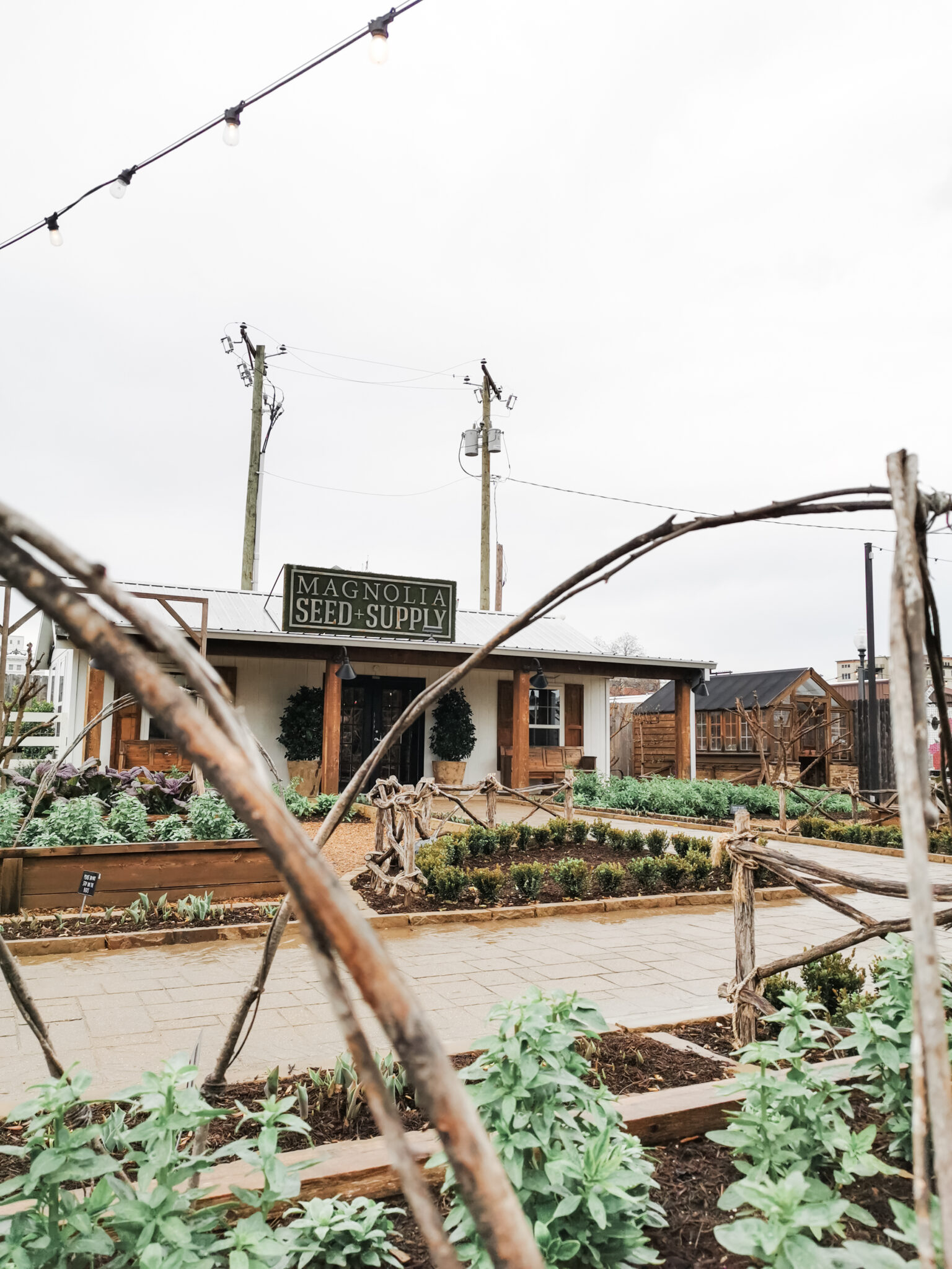 A glimpse of the Magnolia Seed + Supply and Joanna Gaines' garden.
