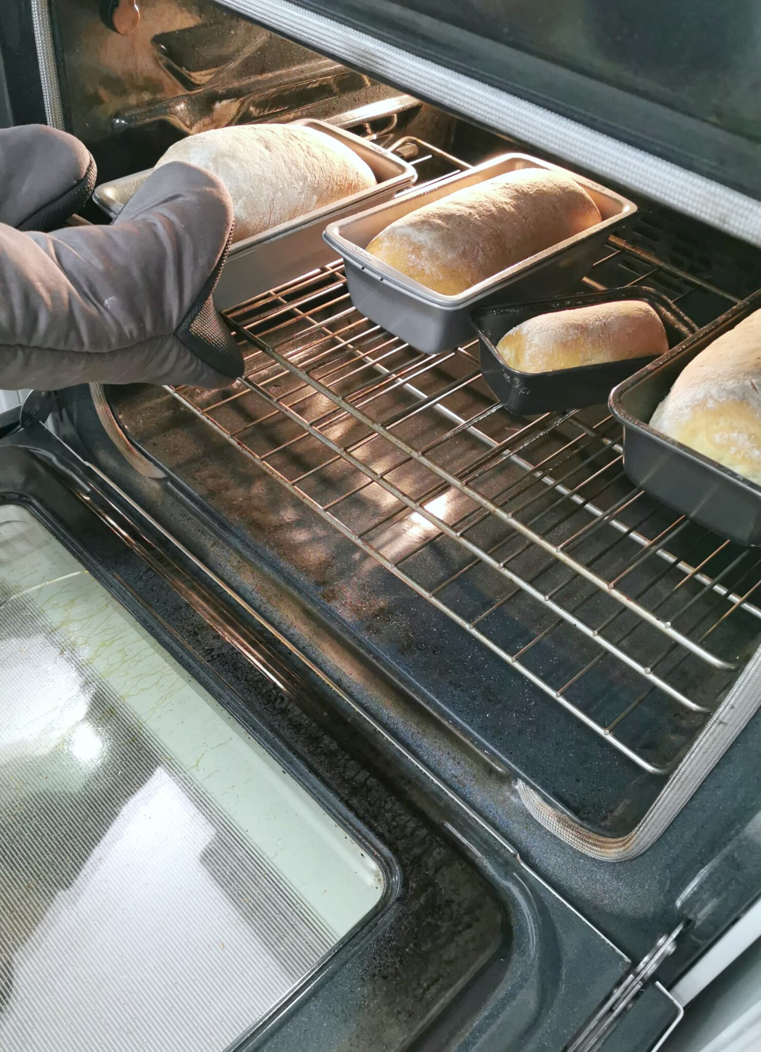 Bread in pans being pulled out of the oven.