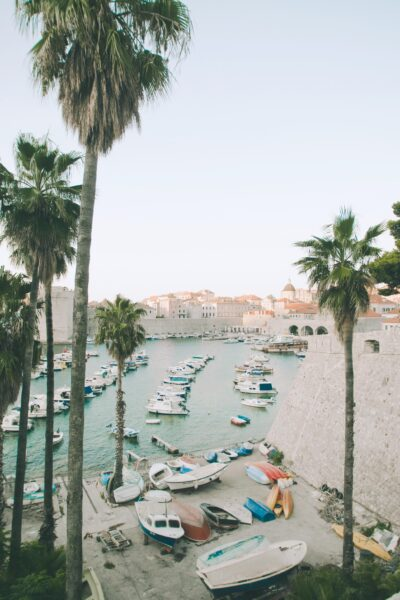 A beautiful port with boats, palm trees, and blue water in Dubrovnik, Croatia.