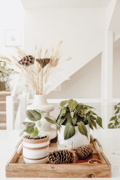 A living room decorated in neutrals with greenery. This article lists a few tweaks that will make your home easier to maintain.